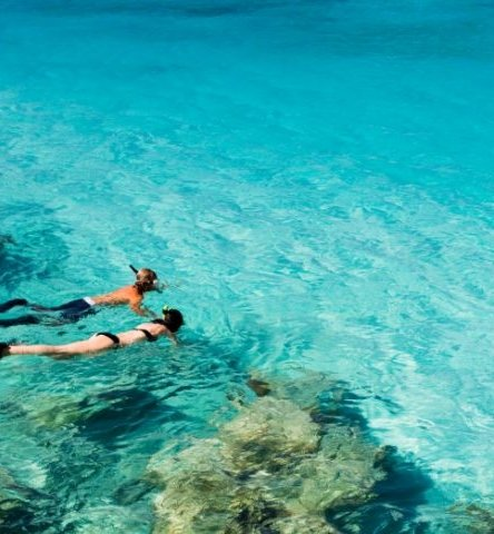 A Couple Snorkeling Off a Reef in the Florida Keys